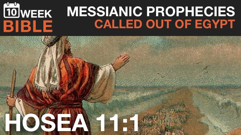 VIDEO   Messianic Prophecies – Called Out of Egypt from Hosea 11